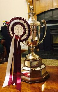 Loran Wins NZPCA Eventing Champs!